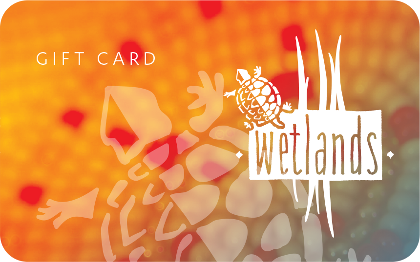 Wetlands Kalispel Casino